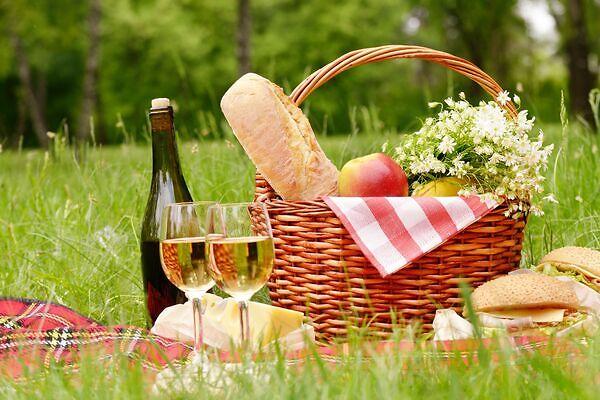 The perfect picnic spot in Walterboro