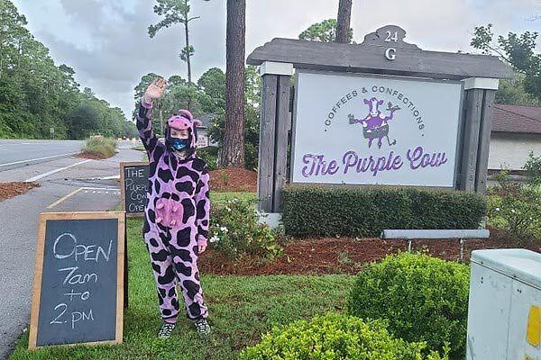 Visit the Purple Cow