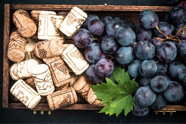 grape varieties produce better wines when planted in certain locations